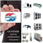 GUNTNER -  WITT - BUCO - DSI